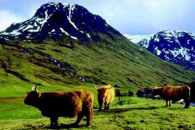 Schottland Wandern West Highland Way Schottlands Inseln